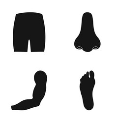 buttocks nose arm foot part of the body set vector image