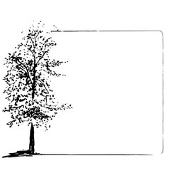Trees collection ink trees grunge frame vector