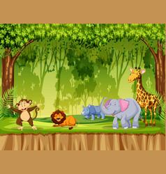 Animals in jungle scene vector