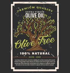 natural olive cooking oil olive tree vector image