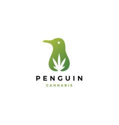 Penguin cannabis cbd oil hemp leaf logo icon vector