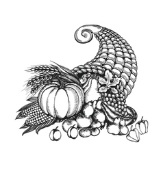 Thanksgiving cornucopia full of harvest fruits and vector