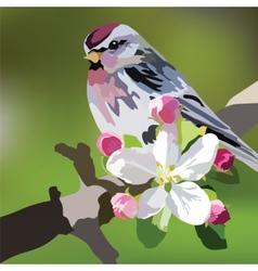 Beautiful spring watercolour bird vector