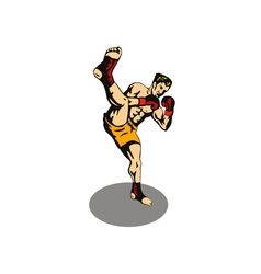 Kickboxer kicking vector