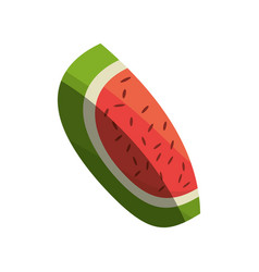 watermelon fruit fresh shadow vector image