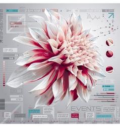 Dahlia infographics set vector image