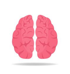 brain icon mind intelligence symbol flat style vector image