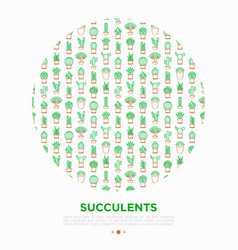 Cactus and succulents in pots concept in circle vector