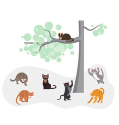 Cats in spring fighting vector