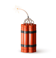 Dynamite bomb with burning wick military detonate vector