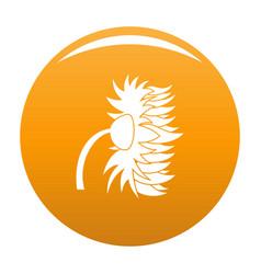Garden sunflower icon orange vector