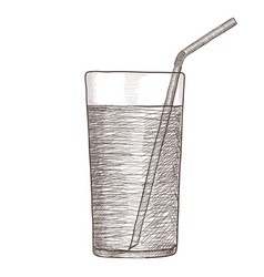 glass of water with drinking straw hand drawing vector image