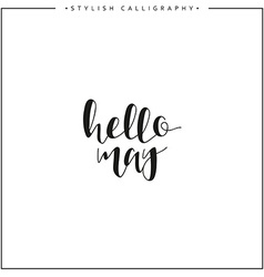 Hello may Time of year Phrase in english vector image vector image