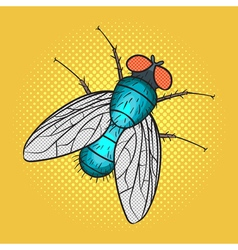 hand drawn pop art of fly vector image vector image