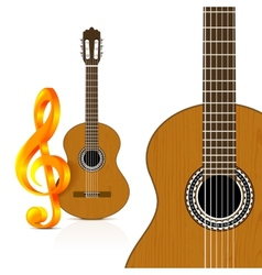 Classical guitar on white background vector image