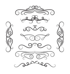 decorative curls and swirls set vector image vector image