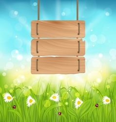 Spring morning meadow and camomiles with wooden vector image