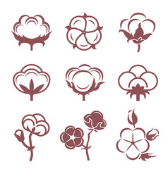 Monochrome stylized pictures set of white cotton vector
