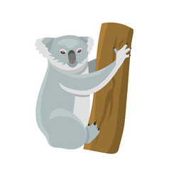 Grey koala bear isolated on wood branch australian vector
