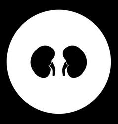Kidneys internal organ medical simple black icon vector