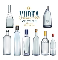 Various Types Of Vodka Bottles vector