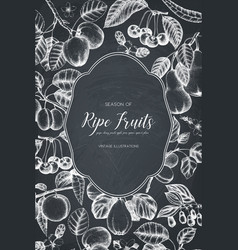 vintage fruits card design on chalkboard vector image
