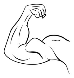 strong male arm symbol of power and muscle vector image vector image