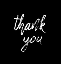 thank you modern brush calligraphy vector image vector image