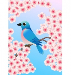 Bluebird vector