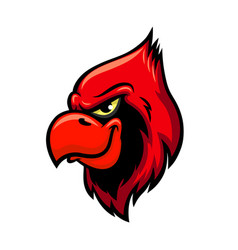 Cardinal red bird head icon vector