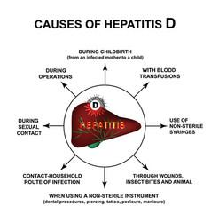 Causes hepatitis d world hepatitis day vector