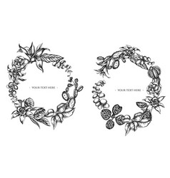 floral wreath black and white ficus iresine vector image