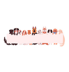 group adorable dogs different breeds holding vector image