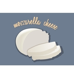 Italian mozzarella cheese vector