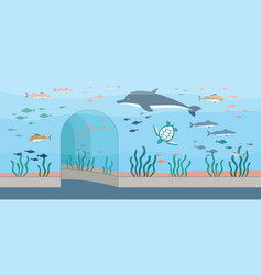Oceanarium or aquarium background with fishes and vector
