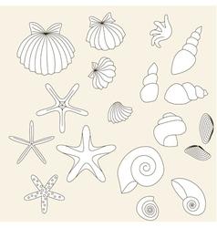 Shells vector