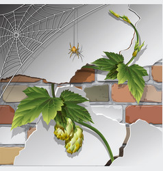 old brick wall with spider web vector image
