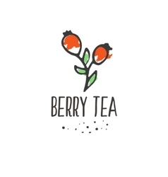 Berry tea print Briar organic herbal hot drinks vector