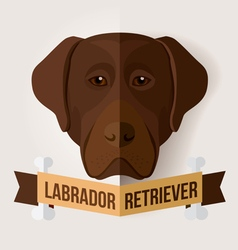 chocolate labrador vector image