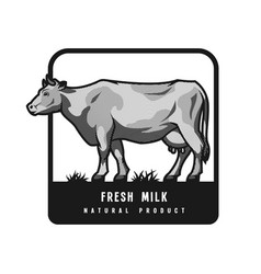 Farm dairy cow logo emblem in engraved style vector