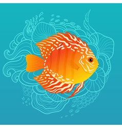 Sunny fish vector image