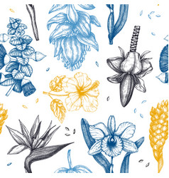 tropical flowers in color seamless pattern vector image
