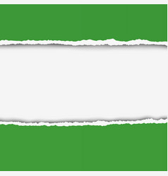 two pieces of torn green color paper vector image