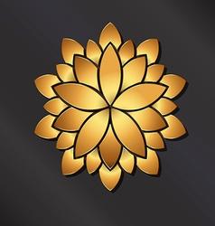 Flower golden mandala vector image
