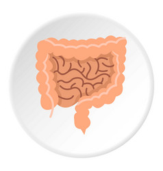 Intestines icon circle vector