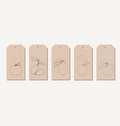 tag set with vintage hand drawn line citrus vector image
