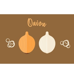 Flat of golden onion whole and half vector image vector image