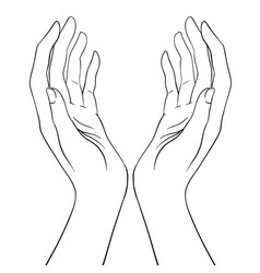 open hands hand drawn occult design vector image
