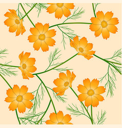 Orange yellow cosmos flower on ivory beige vector