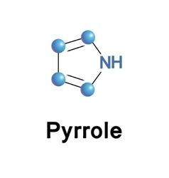 Pyrrole organic compound vector